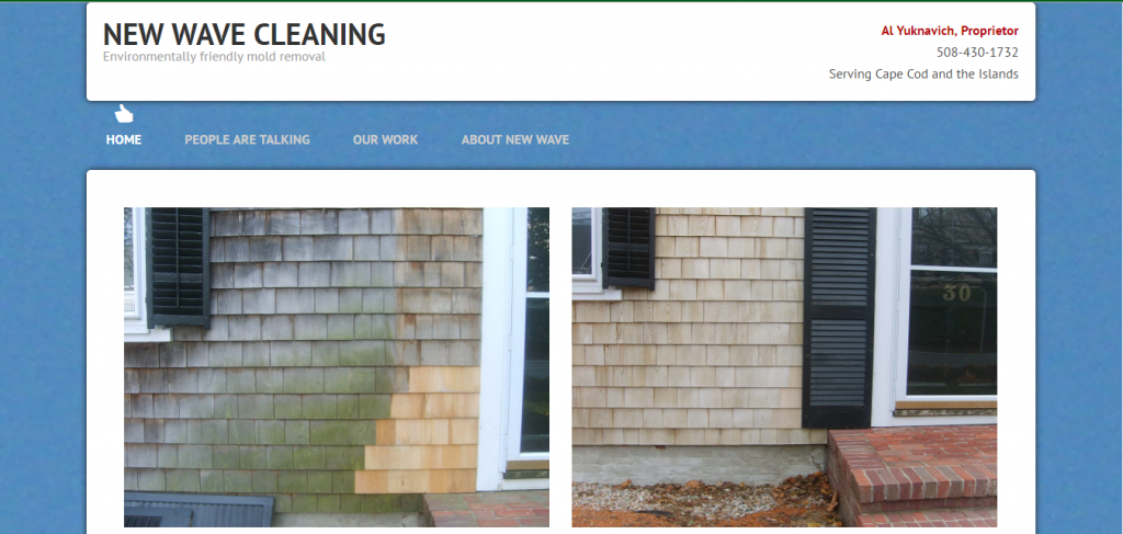 New Wave Cleaning mold removal website screenshot