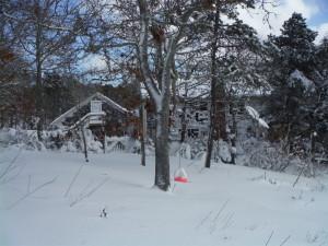 Post snowstorm